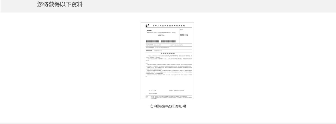 专利恢复请求_04.jpg